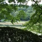 Kinkaku-ji temple garden